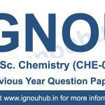 CHE 1 Question papers of Previous Years